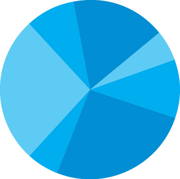 complete_pie_blue