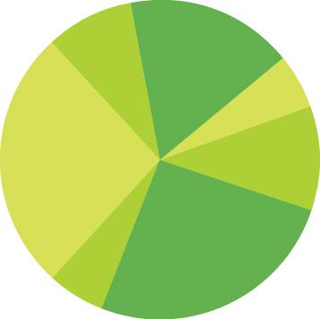 complete_pie_green